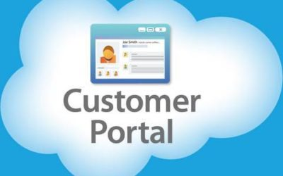 Inexpensive Options for your Salesforce Customer Portal
